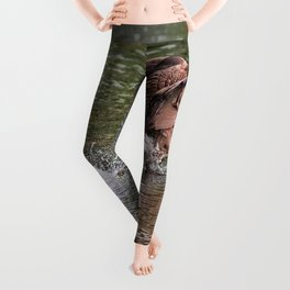 Run Along - Canada Goose Running across Lake Water Leggings