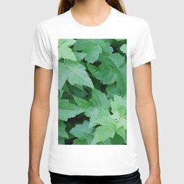 Settled T-shirt
