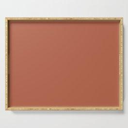 Terracotta Monohrome Art, Desert Minimalist Print, Rust Orange Decor Serving Tray
