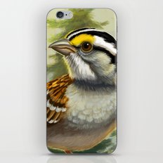 Song of the North iPhone & iPod Skin