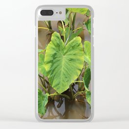 Pū Kalo Clear iPhone Case