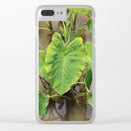 Pū Kalo Clear iPhone Case