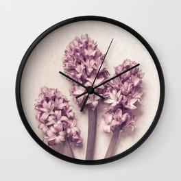 Three Pink Hyacinths Wall Clock
