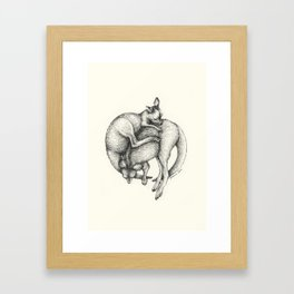 Sleeping Joeys Framed Art Print
