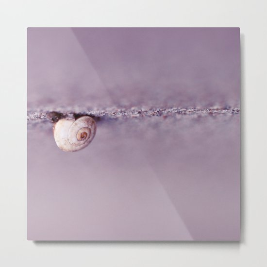 Snail on Crack Metal Print
