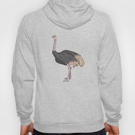 Ostrich Illustration Art design Gift Hoody