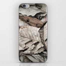 Forest Floor iPhone Skin