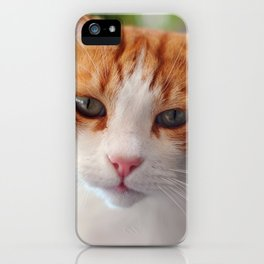 Garfield - a red cat iPhone Case