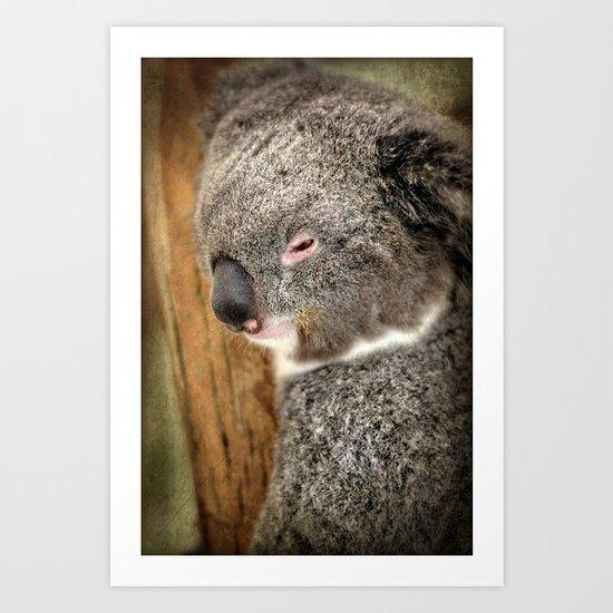 Sleepy Koala Art Print