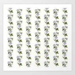 Ivy-Leaved Morning Glory Pattern Art Print