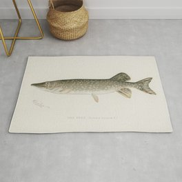 Pike( Lucius Lucius) illustrated by Sherman F Denton (1856-1937) from Game Birds and Fishes of North Rug