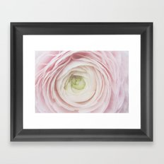 Anemone Flower in LOVE Framed Art Print