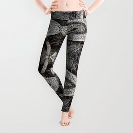 Air Plant Gray Pattern Leggings