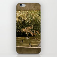 Duck Pond iPhone & iPod Skin