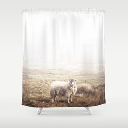 Sheep, Ireland. Shower Curtain