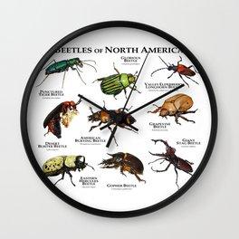 Beetles of North America Wall Clock