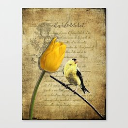 Rustic Goldfinch Tulip Journal type Modern Country Modern Cottage Chic Art A257 Canvas Print