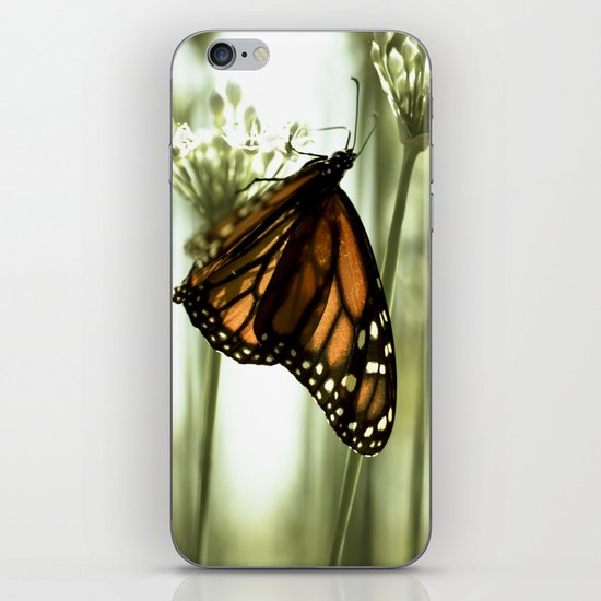 Northward Return iPhone & iPod Skin