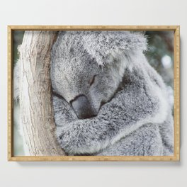 Sleeping Koala Serving Tray