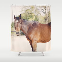 Kind Gulliver Shower Curtain