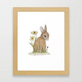 Rabbit Among the Flowers Framed Art Print