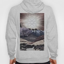 CREATURE OF THE UNIVERSE Hoody