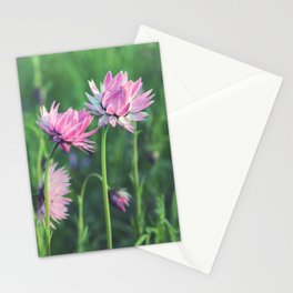 Everlasting Daisy Duo Stationery Cards
