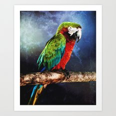 Mister Macaw Art Print
