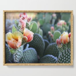 Cactus Flower Series: Pink Yellow Blooms Serving Tray