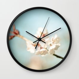Pink Spring Cherry Blossoms  Wall Clock