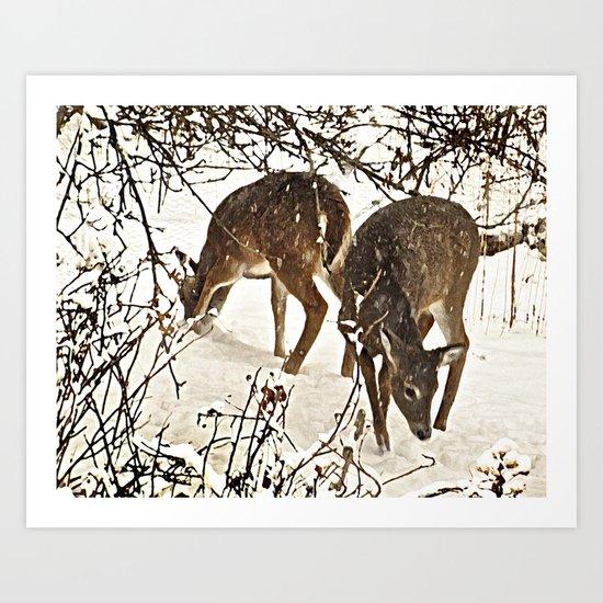 Deer in Snow Art Print