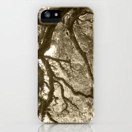 WaterOak iPhone Case