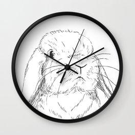 Curious Holland Lop Bunny Wall Clock