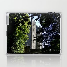 Bunratty Flank Laptop & iPad Skin