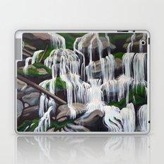Catawba Falls II Laptop & iPad Skin