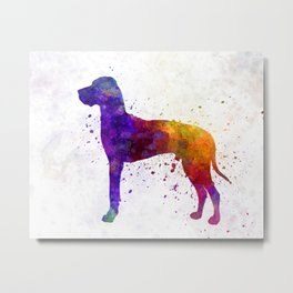 Great Dane 01 in watercolor Metal Print