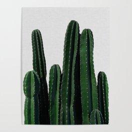 Cactus I Poster