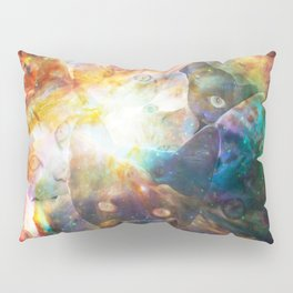 The Cat Galaxy Pillow Sham