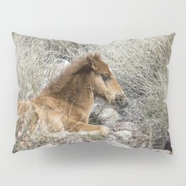 Salt River Colt Taking a Rest Pillow Sham