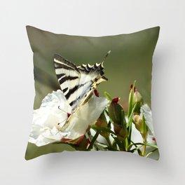 dulce nectar Throw Pillow