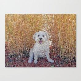 Maya Puppy Canvas Print