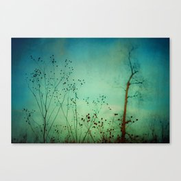 Between Autumn and Winter Canvas Print