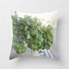 Downtown Flower Pot Throw Pillow