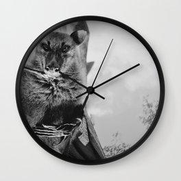 Fruit bat hanging Wall Clock