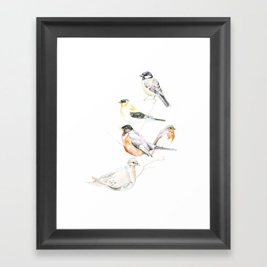 Birds of the Midwest Framed Art Print