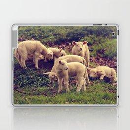 Lambs Laptop & iPad Skin