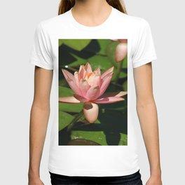 Soft Pink Waterlily T-shirt