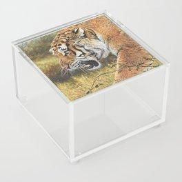 Lunchtime Acrylic Box