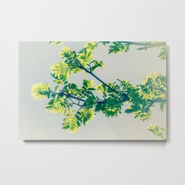 Pretty leafs Metal Print