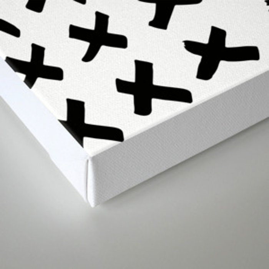 _ X X X Canvas Print